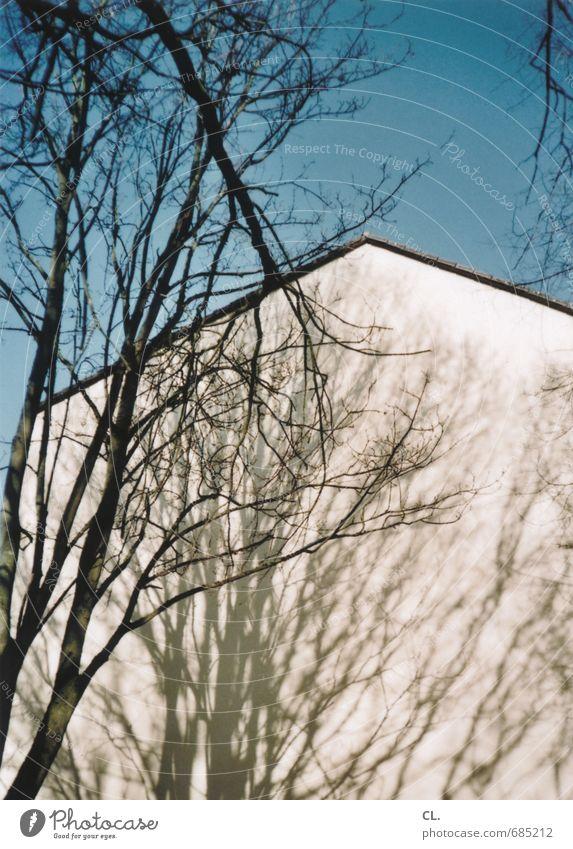 schattenhaus Umwelt Natur Himmel Wolkenloser Himmel Schönes Wetter Baum Garten Park Haus Einfamilienhaus Mauer Wand Häusliches Leben Ast Schattenspiel Wachstum
