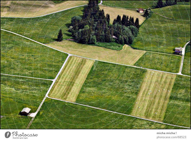 von oben betrachtet ... Feld Wiese Baum Wege & Pfade Vogelperspektive klein übersichtlich Hütte Netz
