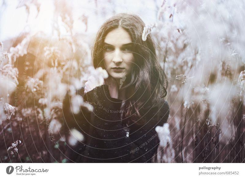 ... Mensch Frau Natur Jugendliche Pflanze Sommer Sonne Junge Frau Landschaft ruhig 18-30 Jahre Erwachsene Umwelt Leben Gefühle feminin