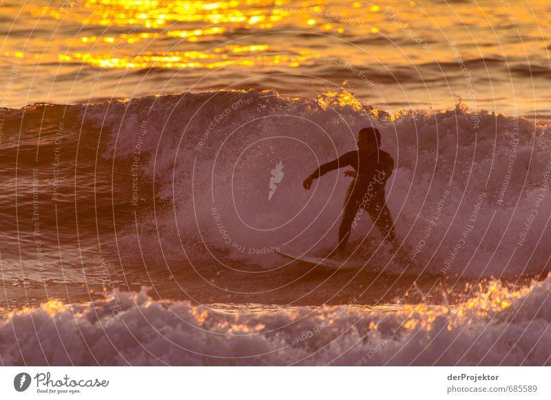 Golden Surfer Freizeit & Hobby Abenteuer Sommer Sommerurlaub Sport Wassersport Mensch maskulin Körper 1 18-30 Jahre Jugendliche Erwachsene Umwelt Natur