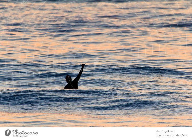 Grüßt du mich? Freizeit & Hobby Sport Wassersport Sportler Surfen Surfer Mensch maskulin Junger Mann Jugendliche Erwachsene Körper 1 18-30 Jahre Wellen Küste