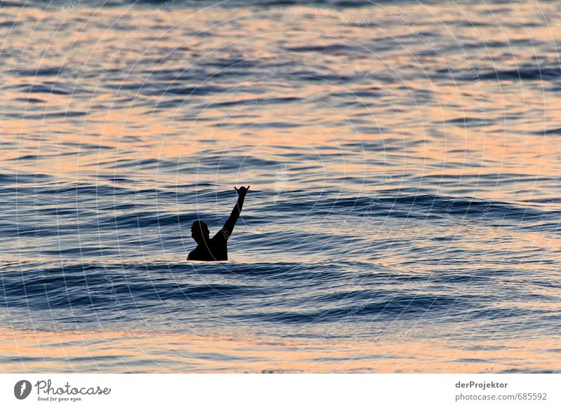 Grüßt du mich? Mensch Jugendliche Mann Meer Freude 18-30 Jahre Strand Junger Mann Erwachsene Gefühle Sport Küste Glück Freizeit & Hobby maskulin Körper