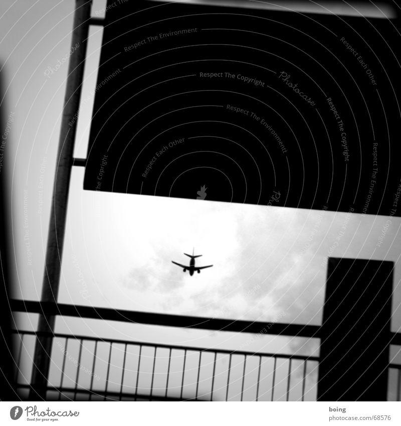 gray bock airrace II Freude Spielen Luftverkehr Flugzeug Ziel Rennsport Flughafen Parkplatz Held Pilot Parkbucht Jetset Schleudersitz