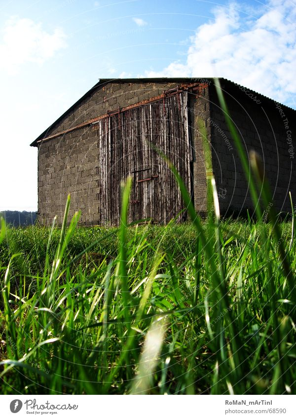 Scheu[Neee] Himmel Sonne grün blau Wolken Gras Mauer Landschaft Graffiti Feld Dach Bauernhof Lagerhalle Scheune Tor Stall