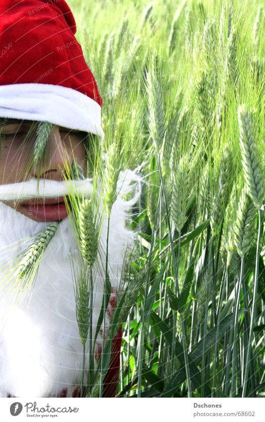 KLAUS WIRD EINS Weihnachtsmann Dezember Winter Feld Gruß Hallo Baum gestikulieren Pirsch Indianer Bart Mütze Stengel Wut schreien Verzweiflung verfehlen Wolken