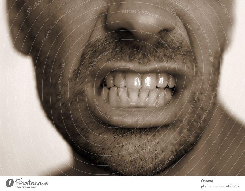 dentists delight Mensch Mann Nase Zähne Bart Kinn Dreitagebart unrasiert Zahnbürste Karies Zahncreme