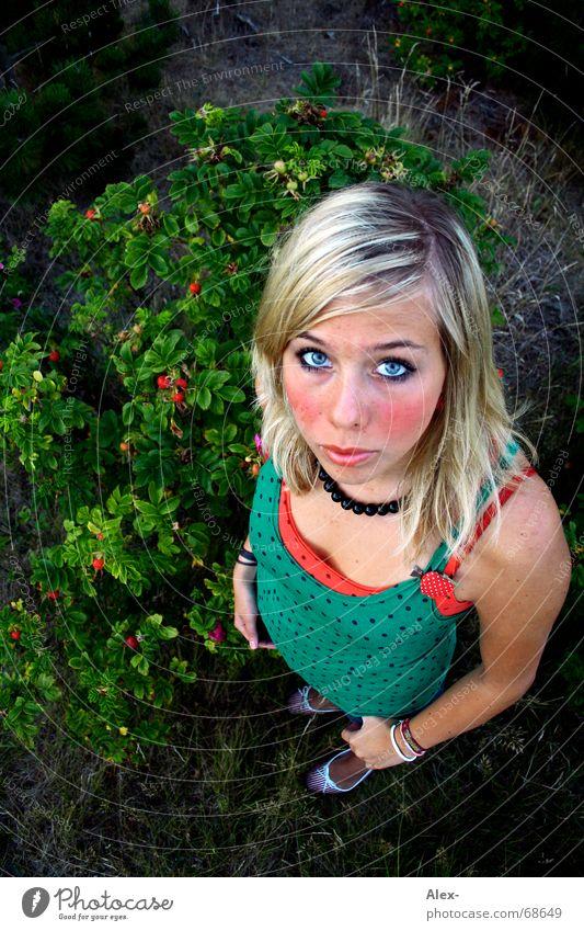 Was will die Eule von mir? Angst klein groß Weitwinkel Vogelperspektive Sträucher Frau süß niedlich schön dunkel Dämmerung Blick Einsamkeit Frucht Beeren Punkt