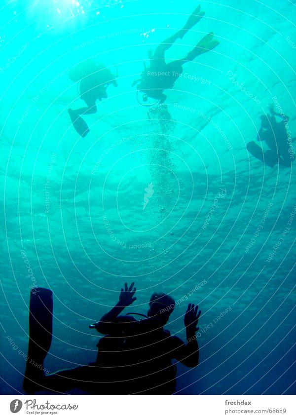 HERMINATOR Wasser Freude Ferien & Urlaub & Reisen frei tauchen türkis Luftblase mystisch aufsteigen Thailand Schwimmhilfe unheimlich winken Taucher Unterwasseraufnahme Farbverlauf