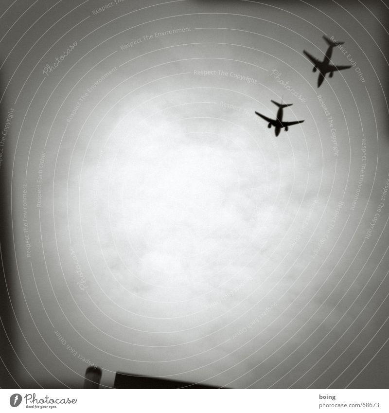 gray bock airrace I (pilot) Freude Freizeit & Hobby Luftverkehr Flugzeug Ziel Rennsport Flughafen Held Pilot Flugplatz Jetset Schleudersitz