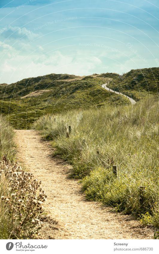 Nordsee | Zu Lande... Himmel Natur Ferien & Urlaub & Reisen blau grün Pflanze Sommer Landschaft ruhig Wolken Ferne Wege & Pfade Gras braun Sträucher Tourismus