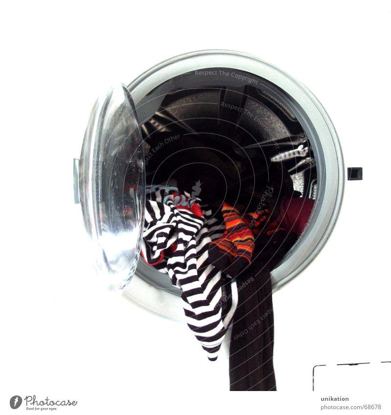 Waschtag weiß Bekleidung frisch Sauberkeit rein Wäsche gestreift Waschmaschine Freisteller Haushaltsführung