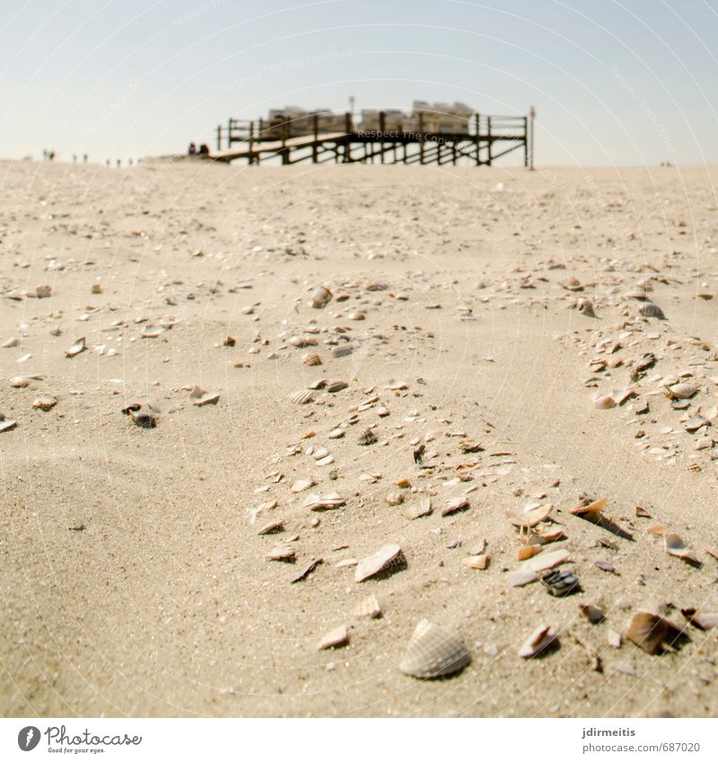 beach Ferien & Urlaub & Reisen Tourismus Sommer Sommerurlaub Sonne Strand Meer Natur Landschaft Sand Schönes Wetter Küste Nordsee Erholung Strandkorb Muschel