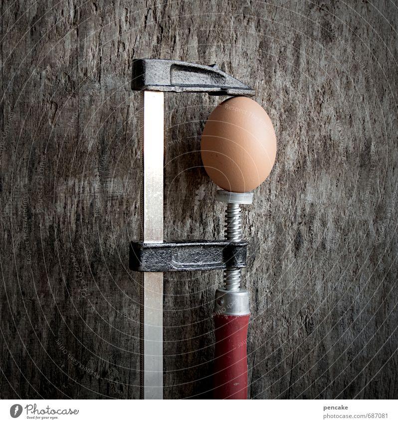 prüferEi Natur Gesunde Ernährung Frühling Lebensmittel authentisch Ernährung rund Zeichen Ostern stark Schmerz Mut Bioprodukte Holzbrett Ei Werkzeug