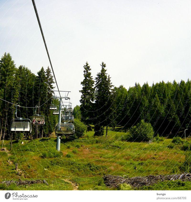 florum aura Natur grün schön Baum Ferien & Urlaub & Reisen ruhig Erholung Wiese Berge u. Gebirge Landschaft frei natürlich Perspektive Hügel Österreich Waldlichtung