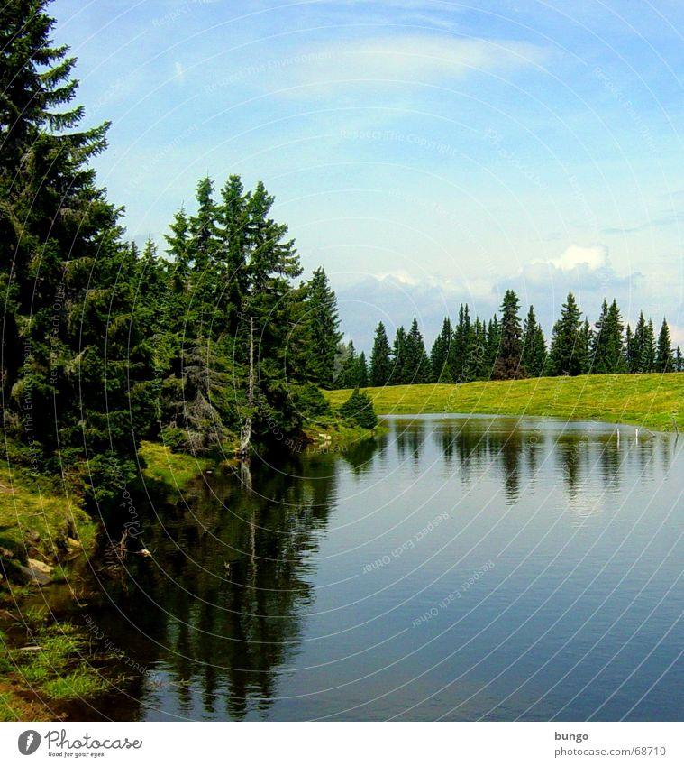 luna melitina Natur Wasser schön Baum grün Freude Ferien & Urlaub & Reisen ruhig Einsamkeit Ferne Wald Erholung Wiese Berge u. Gebirge See Landschaft
