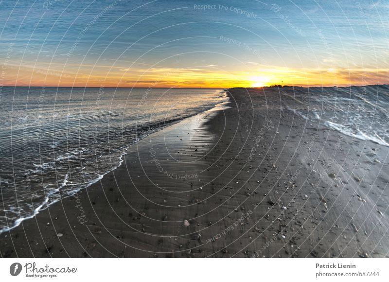 lungs of life Umwelt Natur Landschaft Urelemente Sand Wasser Himmel Wolken Sonne Sonnenaufgang Sonnenuntergang Sonnenlicht Wellen Küste Strand Meer Abenteuer