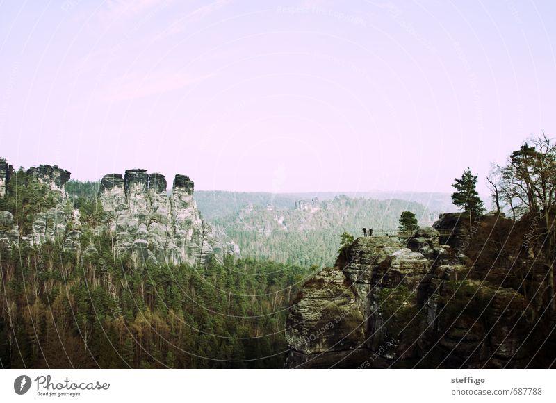 Postkartenmotiv Natur Ferien & Urlaub & Reisen Baum Erholung Landschaft Wald Berge u. Gebirge Freiheit außergewöhnlich Felsen Tourismus Perspektive wandern