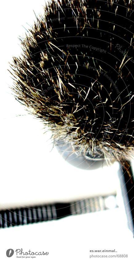 du stichst wie ein igel. Mann Erwachsene Haare & Frisuren Arbeit & Erwerbstätigkeit Haut maskulin Bart Körperpflege Pinsel Bär stechen gebraucht