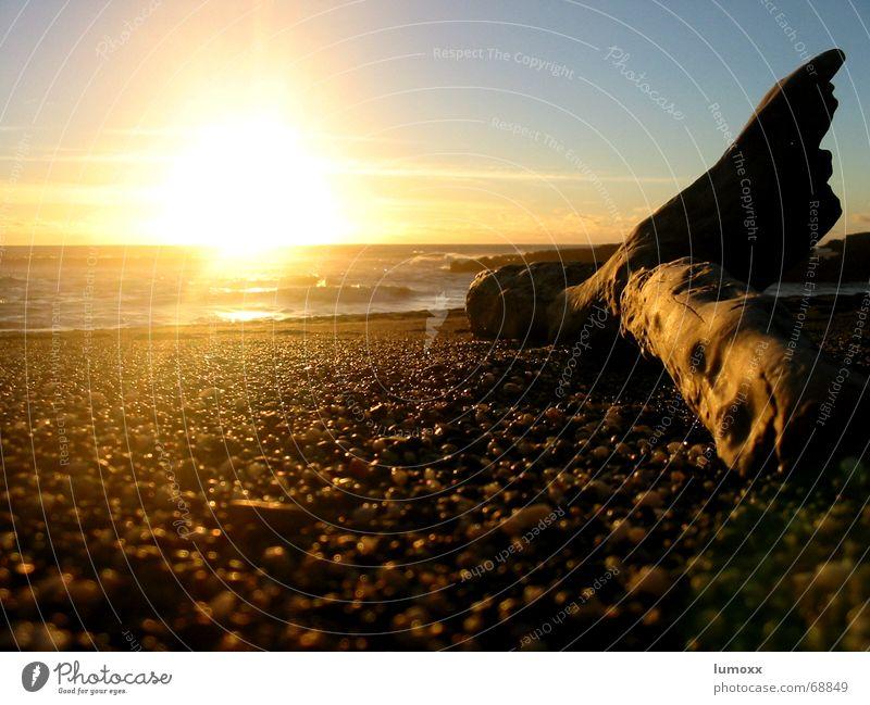 Sunset in NZ Wasser Sonne Meer blau Strand Ferien & Urlaub & Reisen gelb Herbst Holz Stein Wellen Küste Lebensfreude Warmherzigkeit Bucht Schönes Wetter
