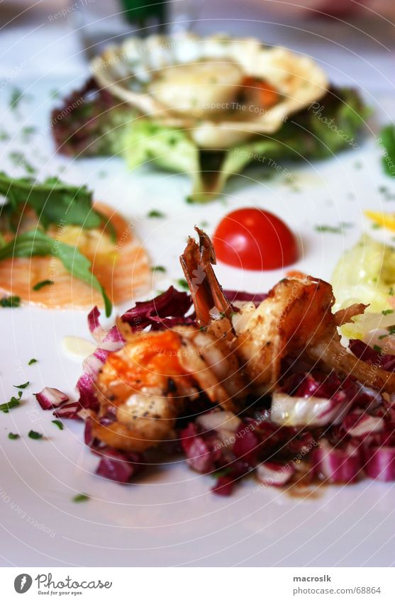 Italienischer Meeresfrüchteteller Lachs Garnelen Krabbe Muschel Saucen Salatblatt frisch grün Küche Teller Restaurant Gesundheit Leben Mahlzeit Nahaufnahme