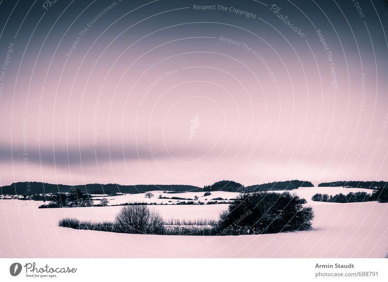 Winter Himmel Natur Einsamkeit Landschaft ruhig dunkel kalt Schnee Stimmung Deutschland Feld Idylle Sträucher authentisch ästhetisch