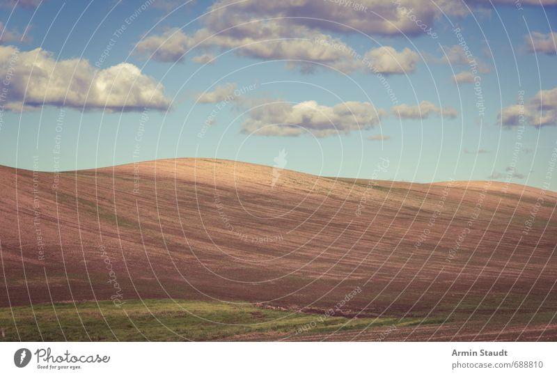 Schlichter Hügel und Wolken Natur Landschaft Erde Himmel Sommer Schönes Wetter Nutzpflanze Feld Mecklenburg-Vorpommern ästhetisch authentisch einfach Ferne