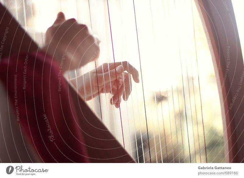 Hand hell Musik Finger Saite musizieren Musikinstrument Harfe