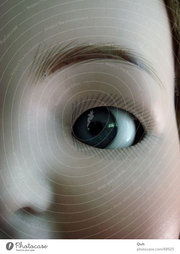 schelmauge Glasauge Wimpern Pupille Wange Augenbraue falsch Nachbildung Baby antik Regenbogenhaut links Teint Geschirr blau Puppe Gesicht Nase Blick Kopf