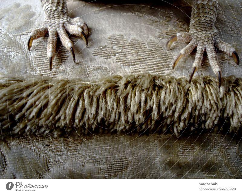 TITELBILD | echse krallen drachen reptilien style design sofa Stil Fuß Beine Design Sofa Fett Drache Reptil Krallen Echsen Symbole & Metaphern