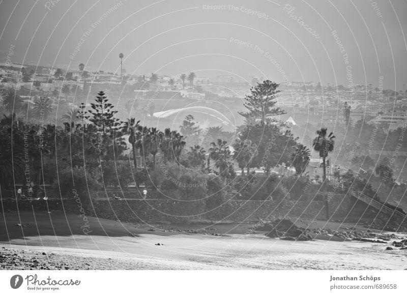 Puerto de la Cruz / Teneriffa XIII Umwelt Natur Wellen Küste Meer Insel ästhetisch Wellengang Gischt spritzen Meerwasser Wasser Kanaren Schwarzweißfoto