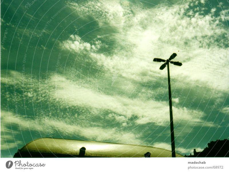 UNTERWASSER MIT MOBY DICK   himmel sky heaven wolken Wolken Himmel Laterne Budapest Unterwasseraufnahme Pflanze Tier Meeresboden Straßenbeleuchtung clouds