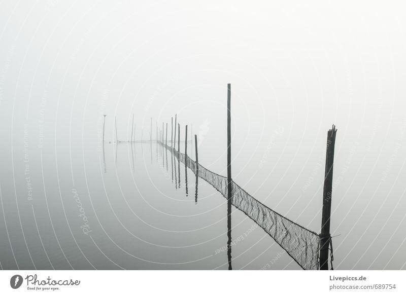 Seenplatte Himmel Natur weiß Wasser Landschaft ruhig Wolken schwarz dunkel kalt Umwelt Herbst grau Wetter Nebel