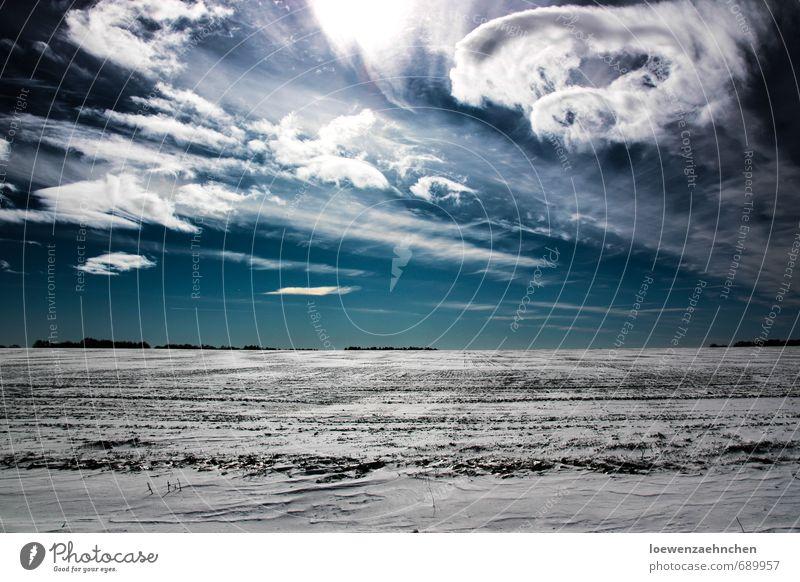 Durcheinander Himmel blau schön weiß Landschaft Wolken Winter kalt Schnee Bewegung außergewöhnlich träumen Feld Kraft wild leuchten