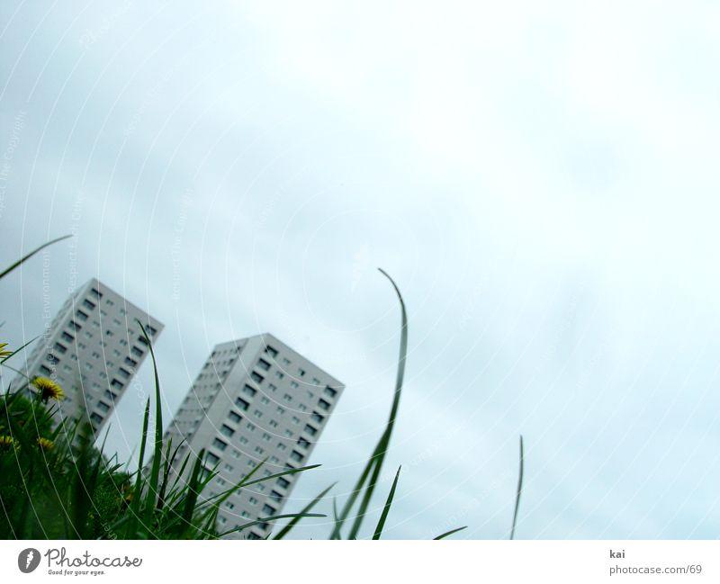 WE-01 Wiese Hochhaus Stadt Architektur Gras Graswiese Halm Froschperspektive Textfreiraum oben Textfreiraum rechts Größenvergleich Gegenteil 2 Neigung