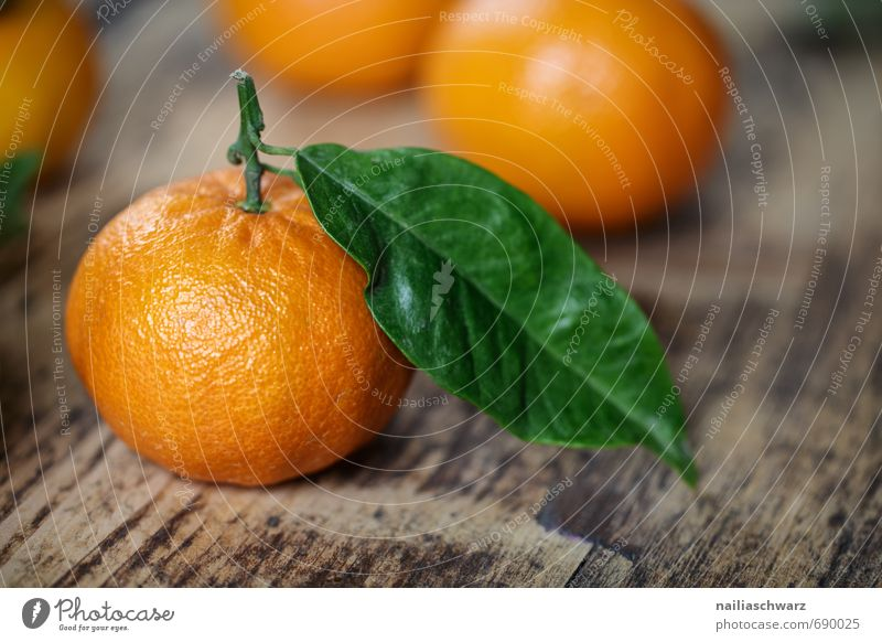 Frische Mandarinen schön grün Farbe Blatt natürlich Lebensmittel orange Frucht Orange frisch Fröhlichkeit viele rein Teile u. Stücke Bioprodukte Holzbrett