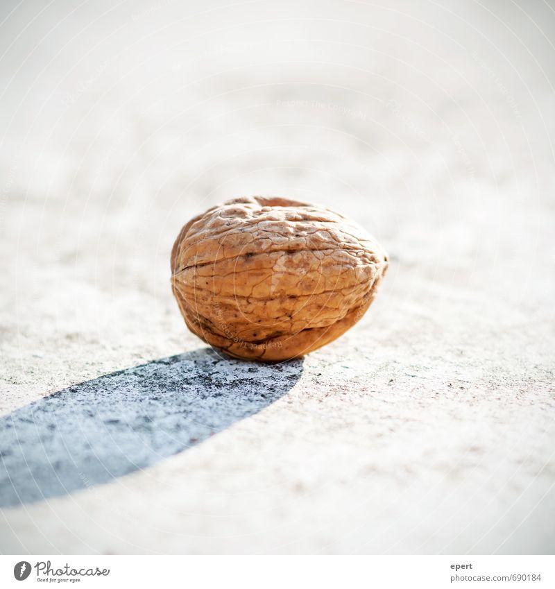 Nuss Natur hell ästhetisch einfach Schutz Süßwaren Hülle Snack Walnuss essbar Nussschale