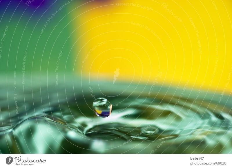 drop Wassertropfen Hintergrundbild grün gelb Makroaufnahme einzeln tröpfchen splash troft