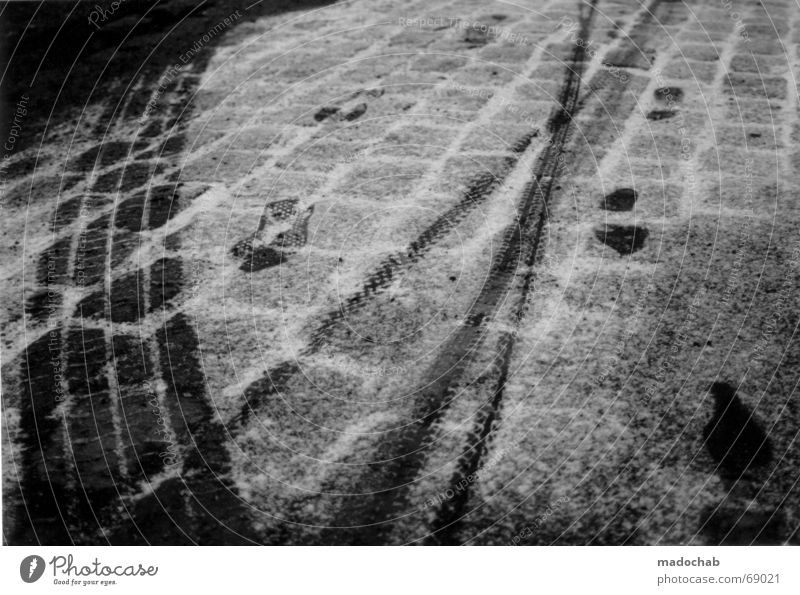 I WAS HERE | spuren schnee snow winter trail track kalt cold Winter kalt Schnee Bewegung Suche Verkehr Asphalt Spuren Vergänglichkeit frieren Fußspur schreiten Fahrbahn Druckerzeugnisse Indianer verfolgen