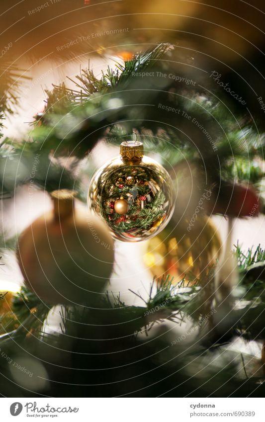 Weihnachtskugel schön Weihnachten & Advent Baum Winter Feste & Feiern Dekoration & Verzierung gold einzigartig geheimnisvoll Kitsch Suche entdecken Schmuck