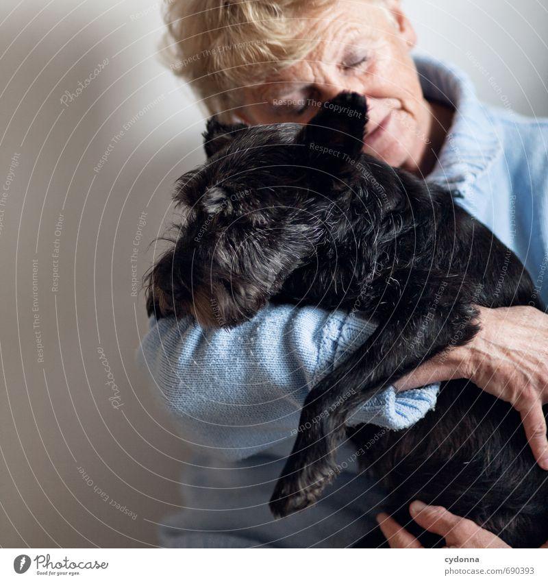 Tierliebe Hund Mensch Frau Einsamkeit ruhig Erwachsene Leben Senior Gefühle Liebe Freundschaft 45-60 Jahre Kommunizieren berühren Schutz