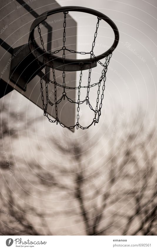 rim Sport Ballsport Sportstätten Metall werfen rund Basketball Korb Basketballkorb Basketballplatz streetball Kette Park Baum Holzbrett Treffer zielen dunking