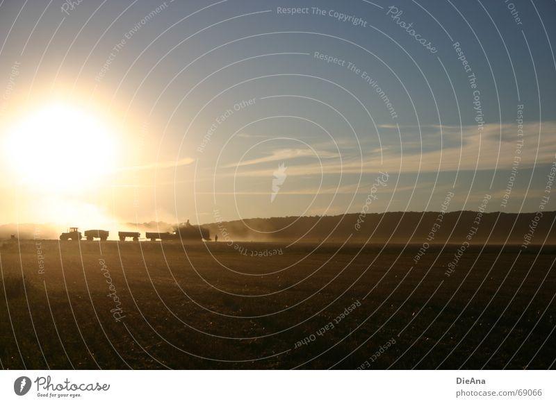 Ernte Himmel Natur Sonne Sommer Feld Schönes Wetter Landwirtschaft Ernte Landwirt Abenddämmerung Staub Traktor Wagen Gefolgsleute August Abendsonne