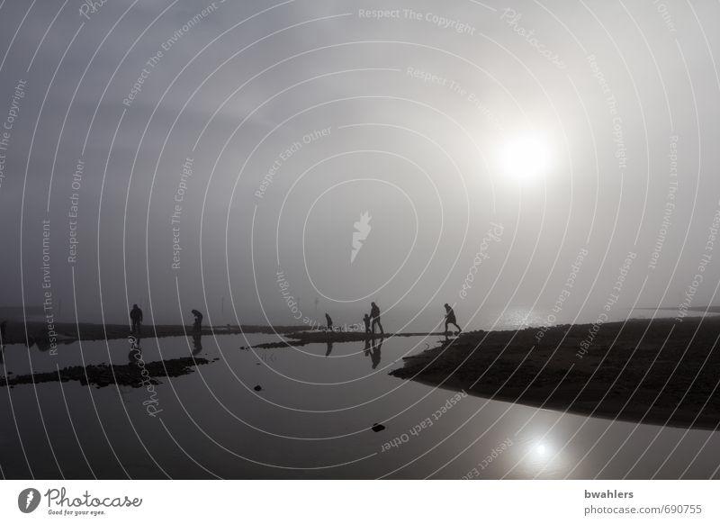 Nebel-Wanderer Mensch Natur Wasser Landschaft Winter schwarz Küste grau See Menschengruppe Insel bedrohlich Seeufer silber