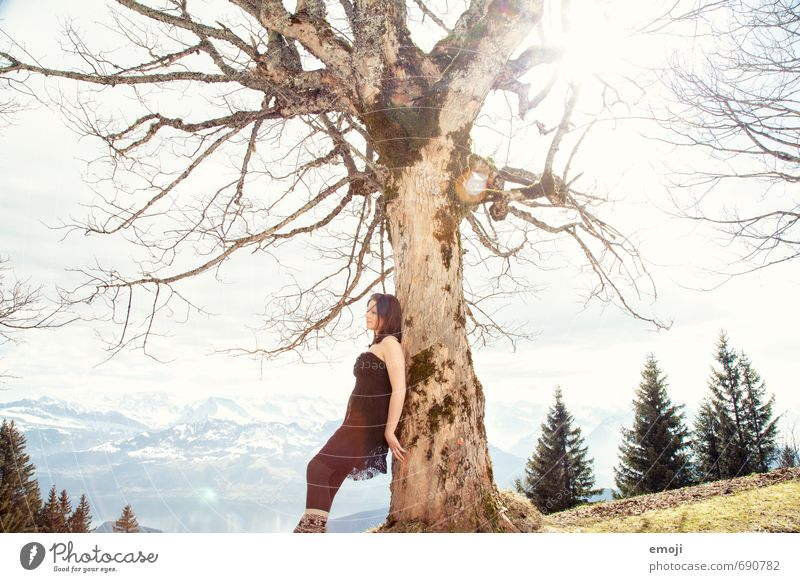 Geäst feminin Junge Frau Jugendliche 1 Mensch 18-30 Jahre Erwachsene Schönes Wetter Baum schön Farbfoto Außenaufnahme Tag Sonnenlicht Ganzkörperaufnahme