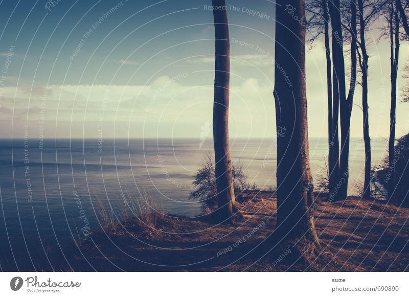 Verstehen und Halten harmonisch Wohlgefühl Zufriedenheit Erholung ruhig Meditation Freiheit Meer wandern Himmel Horizont Baum Küste Ostsee außergewöhnlich