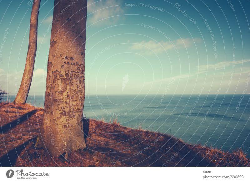 Marterpfahl Himmel Natur blau Baum Meer Einsamkeit Landschaft ruhig Wolken Umwelt Küste Freiheit Stimmung Horizont Luft wandern