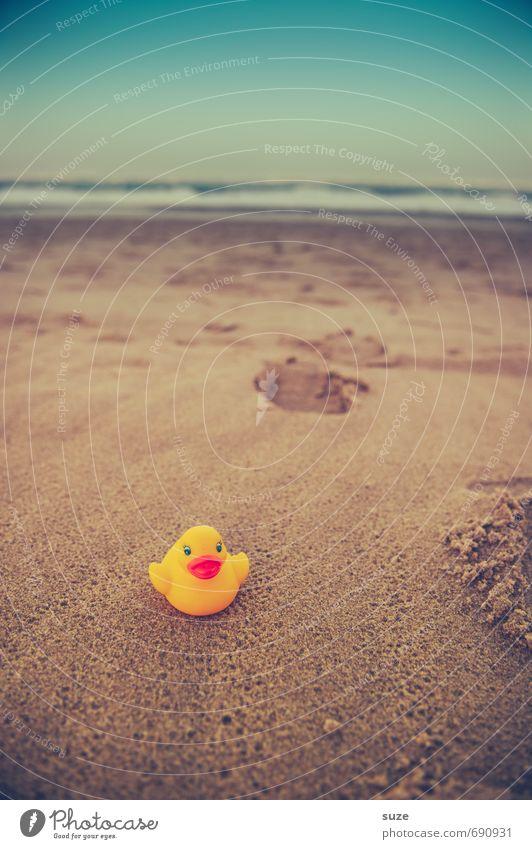 Schnatti aus dem Meer Himmel Ferien & Urlaub & Reisen blau schön Sommer Einsamkeit Freude Strand gelb Küste lustig Spielen klein Sand braun