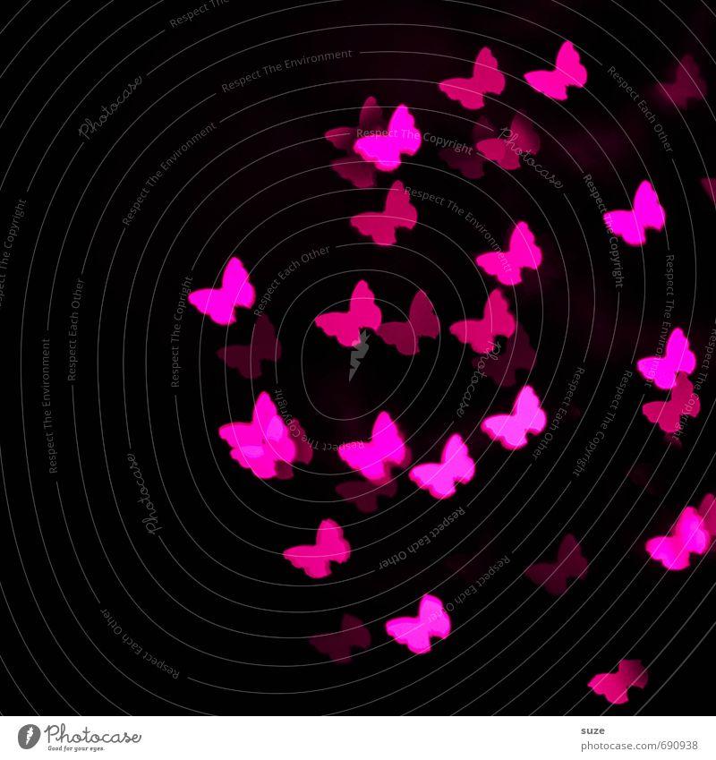 Nachtschwärmer Lifestyle Stil Design schön Dekoration & Verzierung Feste & Feiern Geburtstag feminin Schmetterling Zeichen leuchten Liebe außergewöhnlich dunkel