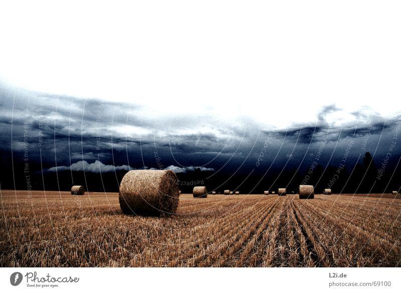 HATE IS THE HARVEST Wolken Feld Stroh Heuballen Strohballen rund gelb Himmel untergehen Apokalypse Sommer Herbst Jahreszeiten gruselig Natur Getreide Ernte