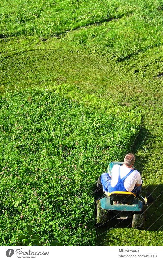 Rasenmäherman Mann grün Wiese Schatten Abendsonne Arbeitsanzug rasenmähen geschnitten kürzen Sportrasen Sommer Arbeit & Erwerbstätigkeit Krach Dienst